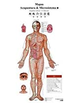 Acupuncture Point Wall Chart