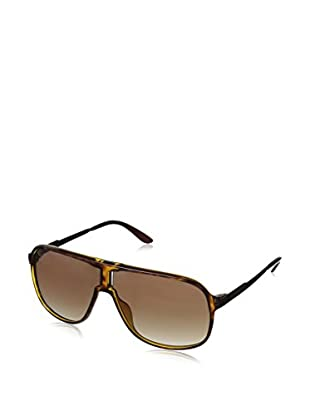 CARRERA Gafas de Sol NEW SAFARI J6 KME (62 mm) Havana