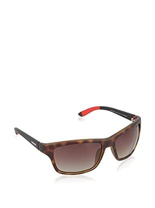 CARRERA Gafas de Sol 8013/S LA 6XV (58 mm) Havana / Negro