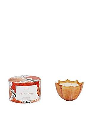 D.L. & Co. Fleur D'oranger 10-Oz. Etched Scallop Candle