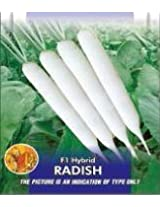 F1 Radish Vegetable Seeds