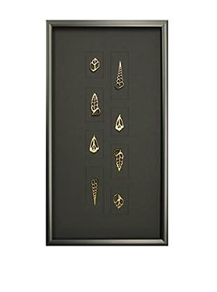 Star Creations Gold Center-Cut Centhium Shells Shadowbox Art