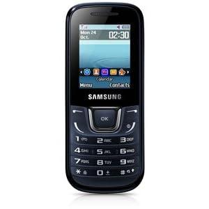 Samsung Guru Music GT-E1282 (Blue-Black)