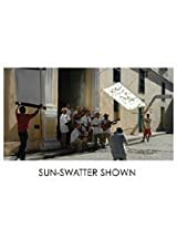 Sun-Swatter Pro 4' x 6' Kit: Frame and Screen withTranslucent 1/3 Seamless Fabric