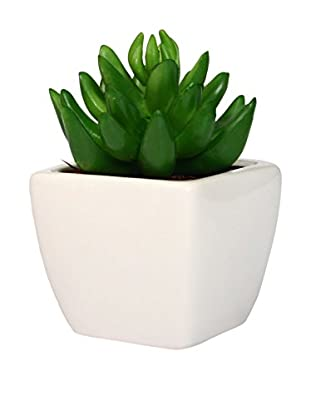 LO+DEMODA Kunstpflanze Karnossa