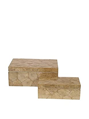Three Hands Set of 2 Faux Shell Boxes