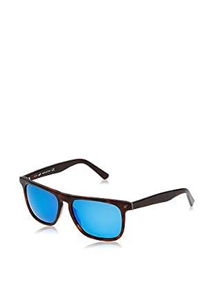 Web Gafas de Sol WE0122 (56 mm) Marrón
