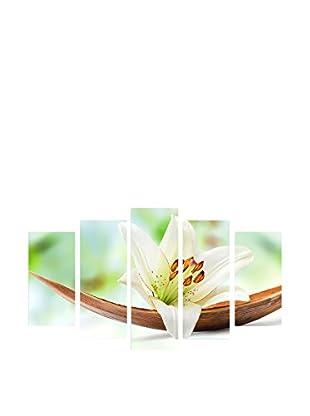 Wallity Flor