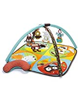 Skip Hop & Hug Hide Activity Gym