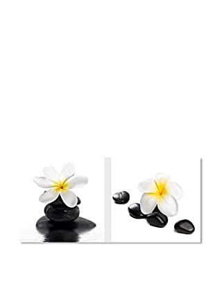 PlatinArt Set 2 Cuadros Zen Flowers 20 x 20