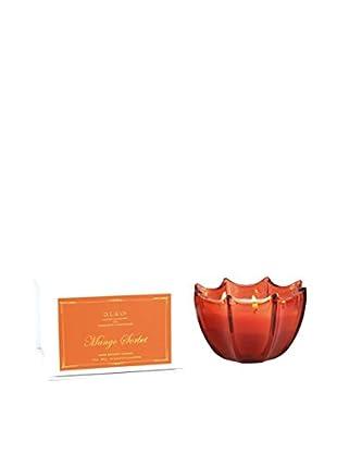D.L. & Co. Mango Sorbet Scallop Candle