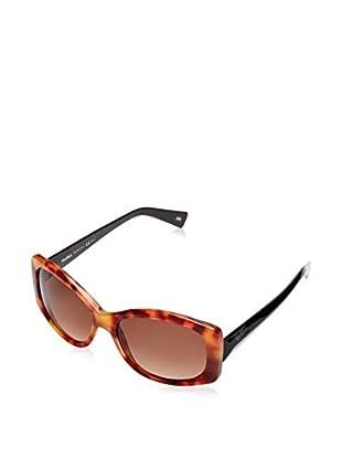 Max Mara Gafas de Sol MM ANNY I_F85-56 Havana
