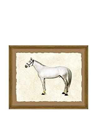 Horse Giclée Print II