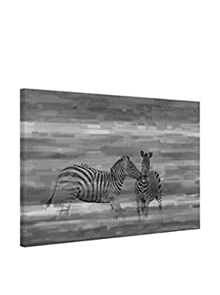 Parvez Taj Leinwandbild Zebra Romp