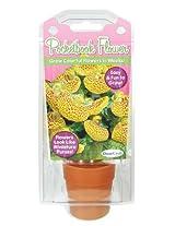 Dunecraft Pocketbook Flower Science Kit