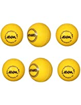 AVM Windball-6 Cricket Ball - Size: Standard, Diameter: 6.5 cm