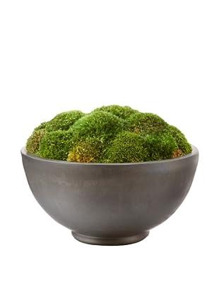 Forever Green Art Handmade Moss Bowl