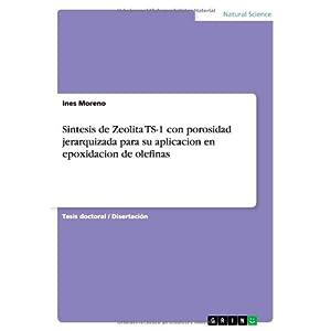 Sintesis de Zeolita Ts-1 Con Porosidad Jerarquizada Para Su Aplicacion En Epoxidacion de Olefinas (Spanish Edition)