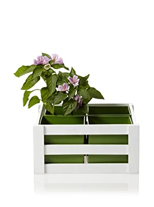 Wald Imports Wooden Crate with 4 Square Metal Inserts, Green/White