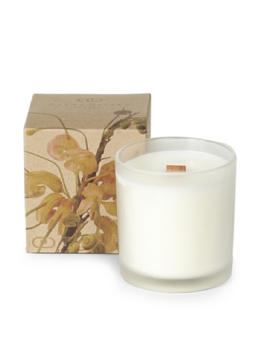DayNa Decker Wild Flowers Candle, Aloe Chenille, 6-Oz.