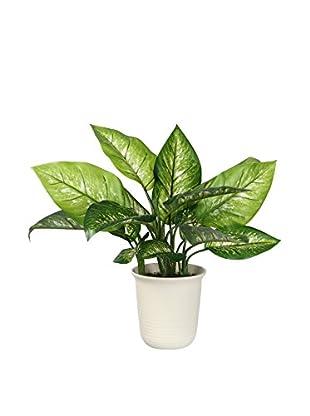 Romantic Style Planta Artificial Dieffenbachia 77726