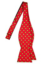 Retreez Classic Polka Dots Woven Microfiber Self Tie Bow Tie - Red with Lime Green Dots, Christmas Gift