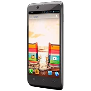 Micromax Canvas Ego A113 (Grey)