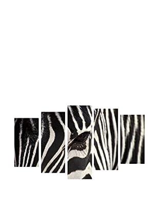 Wallity Cebra
