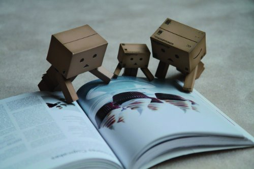 365 Days of Danboard -Amazon.co.jp box-