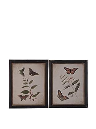 Cuadro Mariposas Multicolor