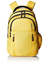 American Tourister Encarta Yellow Laptop Backpack (Encarta 04_8901836132953)