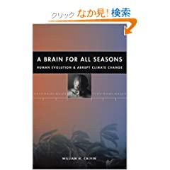 A Brain for All Seasons: Human Evolution and Abrupt Climate Change