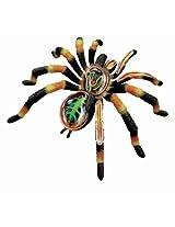 Tedco 4D Vision Tarantula Spider Anatomy Model