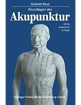 Grundlagen der Akupunktur: Chinesische Übersetzungen von Karl Alfried Sahm Zeichnungen von Petra Kofen
