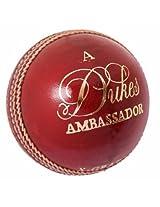Dukes Cricket Ball Ambssador