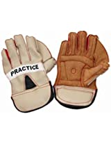 Vinex Wicket Keeping Gloves Practice