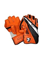 SG RSD Prolite Cricket Wicket Keeping Gloves