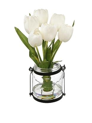Winward Tulip in Country Jar (White)