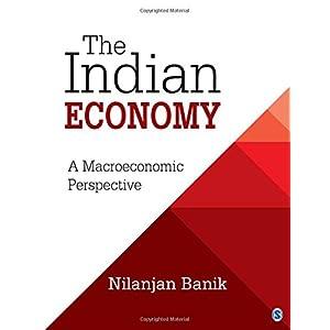 The Indian Economy: A Macroeconomic Perspective
