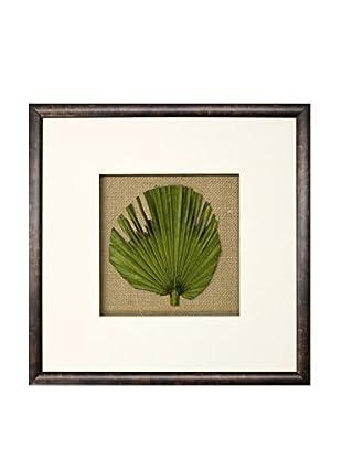 Star Creations Palm Leaf on Light Green Mat Shadowbox Art