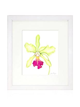 Orchid Beauty III, White/White