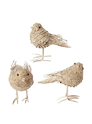 RAZ Set of 3 Assorted Birds