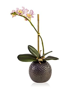 New Growth Designs Faux Small Potted Orchid (Cream/Purple)