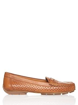 Geox Zapatos Itali (Marrón)