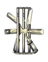 CRICKET Hanayama Cast Metal Brain Teaser Puzzle (Level 2)