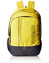 American Tourister Yellow Casual Backpack (AMT ALLER2016 BACKPACK01_8901836129335)