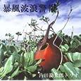暴風波浪警報 内田勘太郎トリオ、 内田勘太郎 、黒川修司、 増田俊郎 (CD2006)