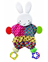 Amazing Baby: Blanket Teether Bunny by Kids Preferred
