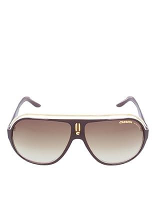 Carrera Gafas de Sol SPEEDWAY 1W Marrón