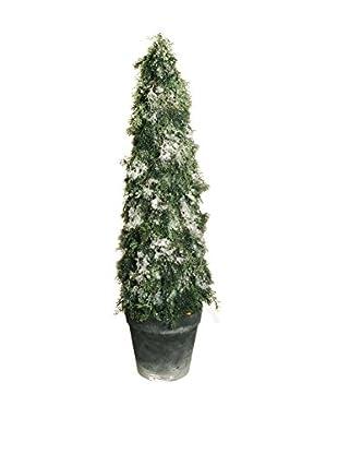 Evergreens Planta Artificial Cypress Pine Blanco/Verde